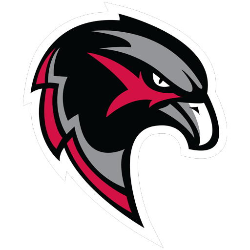Blackhawk bird head logo